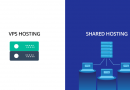 VPS or Shared Hosting: Which is the Best for Your Business?