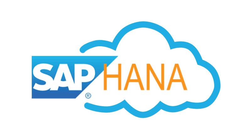 SAP HANA Cloud Services DBaaS and DWaaS