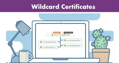 A Complete Guide to Wildcard Certificates