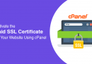 Activate the Paid SSL Certificate on Your Website Using cPanel